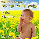 David Sun In The Meadow (Nature Sounds For The Very Young)