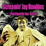 Screamin' Jay Hawkins I Put A Spell On You - Best Of