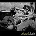 Black Lab Two Strangers