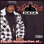 Kata The Re-Introduction Of...