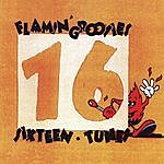 The Flamin' Groovies Sixteen Tunes
