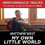 Matthew West Premiere Performance Plus: My Own Little World