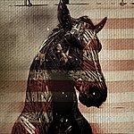 needtobreathe Live Horses (Ep)
