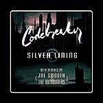 Codebreaker Silver Lining
