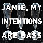!!! Jamie, My Intentions Are Bass