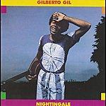 Gilberto Gil Nightingale