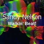 Sandy Nelson Walkin' Beat!