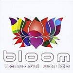 Bloom Beautiful Worlds
