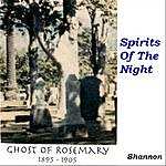 Shannon Roberts Spirits Of The Night