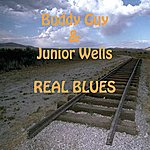 Junior Wells Every Day I Have The Blues