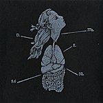 Oneiroid Psychosis Assuage (Single)