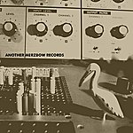 Merzbow Another Merzbow Records