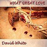 David White What Great Love