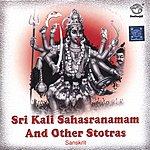 Prof.Thiagarajan & Sanskrit Scholars Sri Kali Sahasranamam And Other Stotras