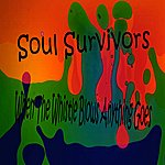 Soul Survivors When The Whistle Blows Anything Goes