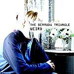 Bermuda Triangle Weird