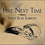 The Fire Next Time Wild Rose Sorrow