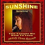 Sunshine You Taught Me How To Love