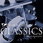Munich Chamber Orchestra The World Of Classics Third Movement