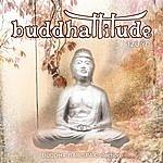 Riccardo Eberspacher Buddhattitude Tzu Yo