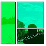 The Color Green The Color Green