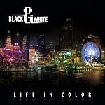 Black And White Life In Color