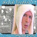 David Vernon Walking In The Air