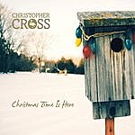 Christopher Cross Christmas Time Is Here