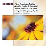 Charles Rosen Piano Sonata