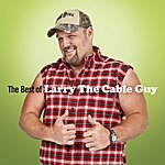 Larry The Cable Guy The Best Of Larry The Cable Guy
