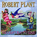 Robert Plant You Can't Buy My Love