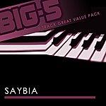 Saybia Big-5: Saybia