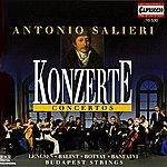 Budapest Strings Salieri: Concertos