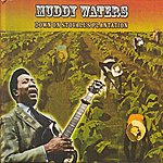 Muddy Waters Down On Stovall's Plantation