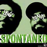 Esa Spontaneo