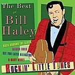 Bill Haley Rockin'little Tunes