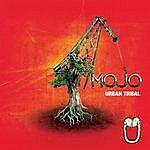 Mojo Urban Tribal