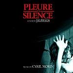Cyril Morin Pleure En Silence