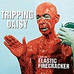 Tripping Daisy I Am An Elastic Firecracker