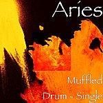 Aries Muffled Drum - Single