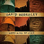 David Berkeley Some Kind Of Cure