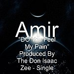 "Amir ""Do You Feel My Pain"" Produced By The Don Isaac Zee - Single"