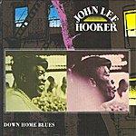 John Lee Hooker Down Home Blues