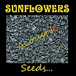 The Sunflowers Seeds