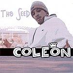 Coleon Tha Seed