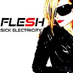 The Flesh Sick Electricity