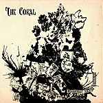 The Coral Butterfly House (Acoustic Version)