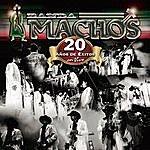 Banda Machos 20 Años De Exitos En Vivo