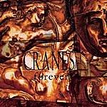 Cranes Forever
