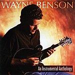 Wayne Benson An Instrumental Anthology